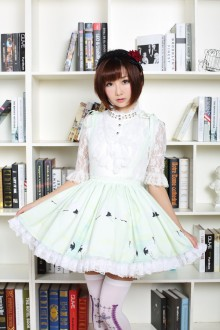 Chinese Style Red-crowned Crane Printing High Waist Sweet Lolita Skirt